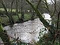 Afon Alwen - geograph.org.uk - 1118562.jpg