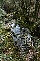 Afon Llynedno - geograph.org.uk - 393565.jpg