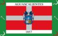 Aguascalientes Flag 27.png