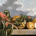 Albert Eckhout - Cabaça, Frutas Cítricas e Cacto.jpg