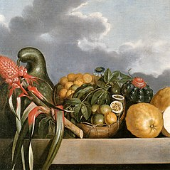 Still-life of gourds, passion fruit, citrus fruits and cactus