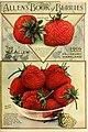 Allen's Book of Berries, 1916 cover.jpg