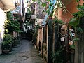 Alley near the Red River in Hanoi 12.jpg