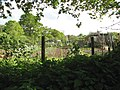 Allotments beside the railway track - geograph.org.uk - 1290702.jpg