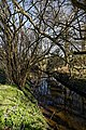 Along Pincey Brook west from Matching Road, Hatfield Heath, Essex, England 02.jpg