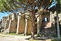 Amphithéâtre, Fréjus - panoramio (1).jpg