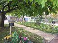 Ancien cimetière de la Croix-Rousse - nov 2016 (37).JPG