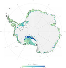 Antarctic Ice Melt-First Year.jpg