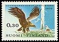 Aquila-chrysaetos-1970.jpg