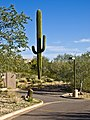 Arizona (8540107947).jpg