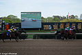 Arkansas Derby 2013 001.jpg