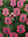 Armistice Day in Ypres - panoramio.jpg