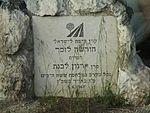 Arnon Livnat memorial in Ben Shemen forest.jpg