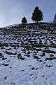 Arosa - panoramio (68).jpg