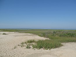 Assateague Island National Seashore - Virginia (8124471895).jpg