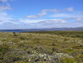 Auckland Island - Auckland Island, North End - from Enderby Island
