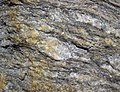 Augen gneiss (Precambrian; Rt. 93 roadcut next to the New River, Mouth of Wilson, Virginia, USA) 2 (30747523995).jpg