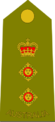 Australian-Army-COL-Shoulder.png