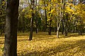 Autumn 2017 (Kharkiv, abandoned park on Timiriaziev street).jpg