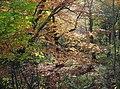 Autumn woodland Hardcastle crags (8186874090).jpg