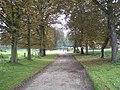 Back drive to Sennowe Hall - geograph.org.uk - 573799.jpg