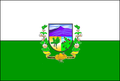 Bandeira de Angicos (RN).PNG
