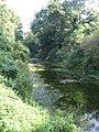 Basingstoke Canal - geograph.org.uk - 1014419.jpg