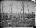 Battlefield of Resaca, Ga.,1864 - NARA - 524953.tif