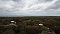 Baumkronenpfad Hainich Blick vom Turm.jpg