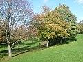 Belmont Park (geograph 3731492).jpg