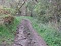 Bend in bridleway - geograph.org.uk - 1248246.jpg