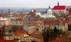 Panorama over the old town of Berezhany