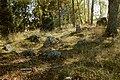 Bergslagssafari 120915 Järnåldersgrav Stora Dicka 01.jpg