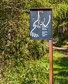 Bergtocht van Cogolo di Peio naar M.ga Levi in het Nationaal park Stelvio (Italië) 16.jpg