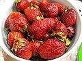 Berry berry.jpg