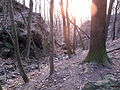Bezejmenný potok mezi Bohnicemi a Podhořím a jeho okolí (03).jpg