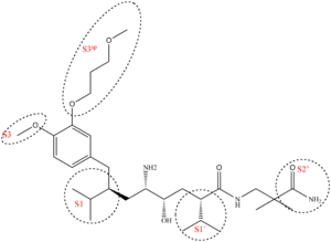 Renin inhibitor - Binding pockets with which aliskiren connects