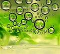 Biofuels.jpg