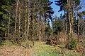Biosphärenreservat Rhön nahe Frankenheim (16).jpg