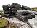 Bleaklow Stones Rock Feature - geograph.org.uk - 456865.jpg
