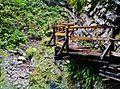 Bled Vintgar-Klamm 34.JPG