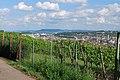 Blick vom Lemberg nach Feuerbach (2).jpg