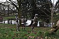 Bob Walters' stainless steel people at Arlington Court - geograph.org.uk - 2244746.jpg