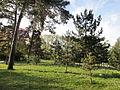 Bois de Vincennes (2014) 22.jpg