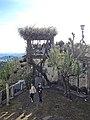 Bom Jesus do Monte, Braga BomJesus DSCN7347 (41955974182).jpg