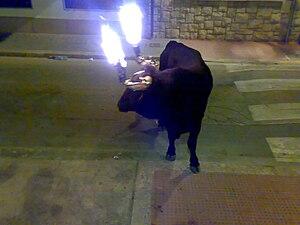 Toro embolado - Toro embolado, Godella 2010.
