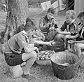 Boy Scouts scrub potatoes ready for the evening meal at a fruit-picking camp near Cambridge in 1943. D16200.jpg
