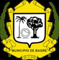 Brasao Municipio Bagre.png