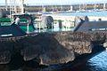 Brest2012-Philweb 3.jpg