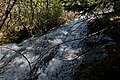 Bridal Veil Falls trail (9298750884).jpg